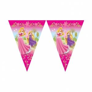 Disney prinsessa banderoll - 2m flagga
